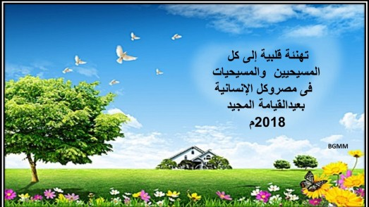 eastern basma moussa 2018